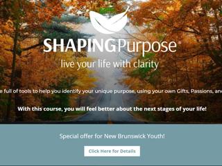 Shaping Purpose Website